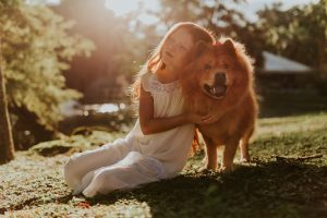 Taking care of your dogs health