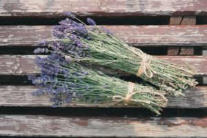 drying lavender and other flowers