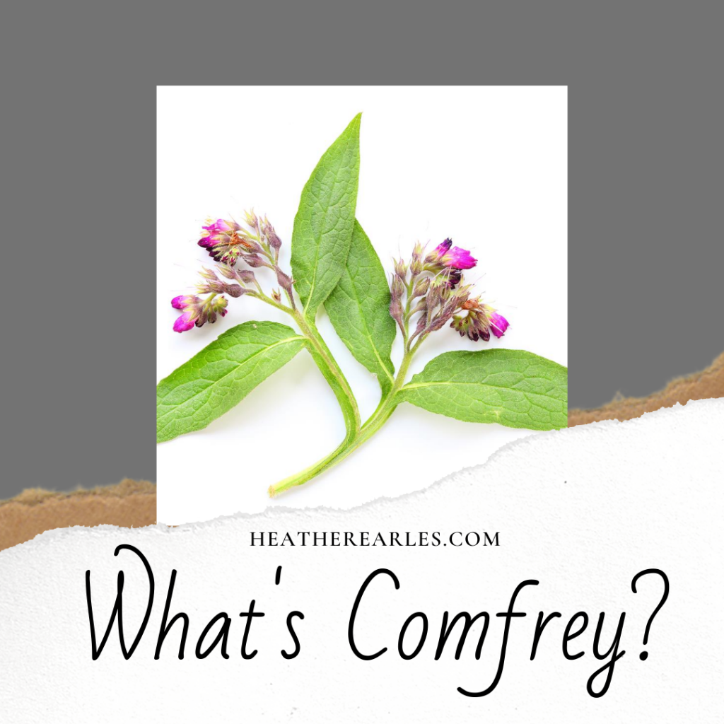 What are the benefits of comfrey #heatherearles #herbnwisdom #naturalliving #comfrey #woundhealing #sprains